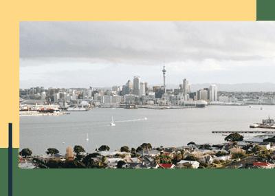 Socialike Auckland